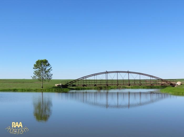 bridgewatercopyrightrachela